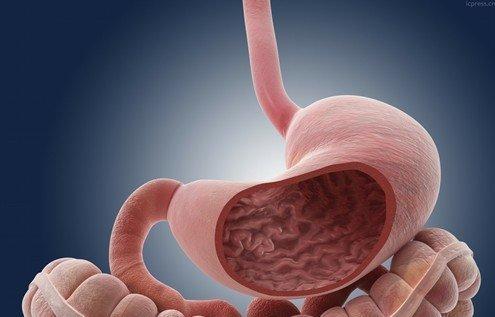 怎么样吃能预防胃癌呢