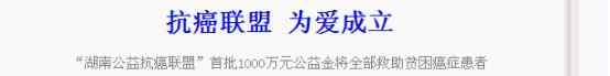 湖南日报报道