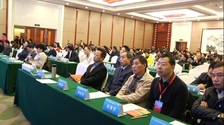 800余名与会代表参与此次医学论坛