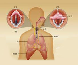 食道癌化疗会有哪些并发症?