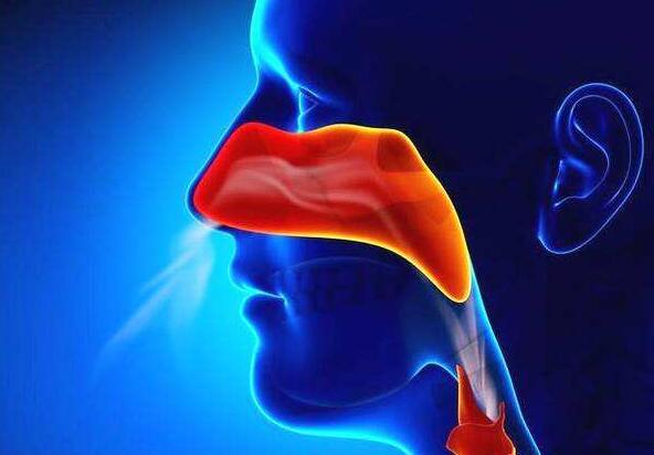 经常流鼻血,小心鼻咽癌!很多人不知道导致错过治疗良机